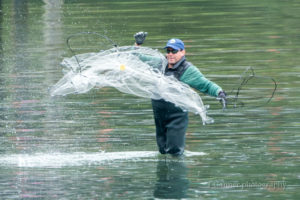 hooligan, eulachon, chilkoot river, Haines, AK, net fishing, Tlingit, Alaska, Lutak