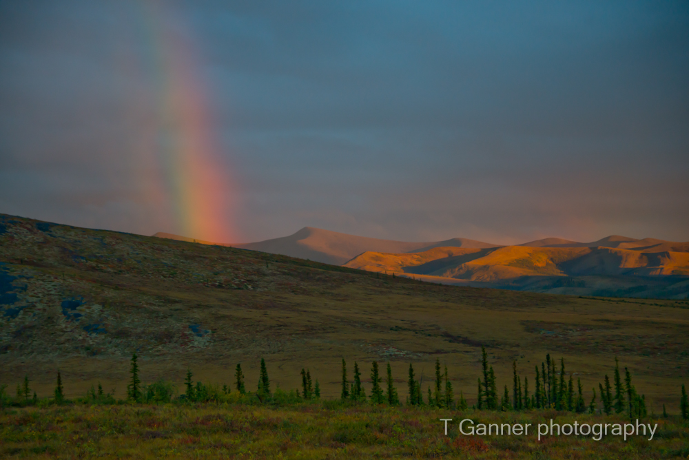 Dempster Highway, Richardson Mountains, Yukon Territory, Yukon, tundra, nature photography, alpenglow, rainbow, sunset, midnight sun