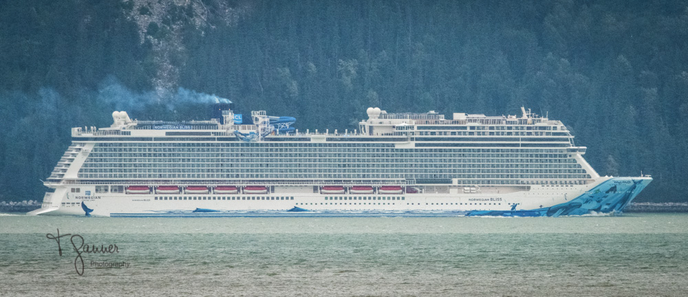 tourism, experience, Haines, Alaska, Southeast, cruise ship