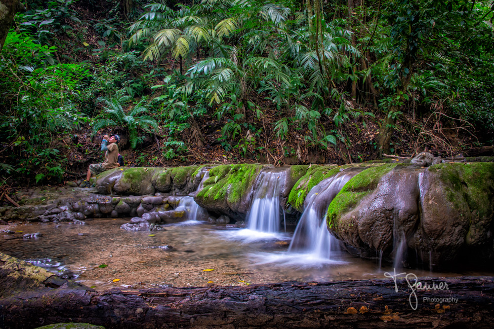 Mexico, Chiapis, Palenque