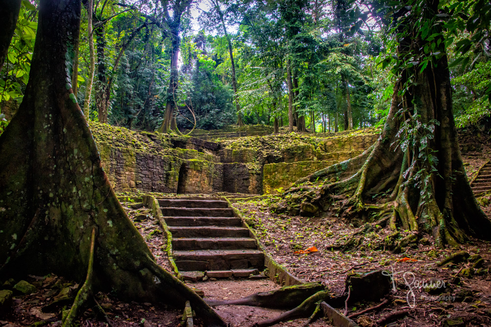 Palenque, Mayan, ruins, archaeology, Chiapis, Mexico