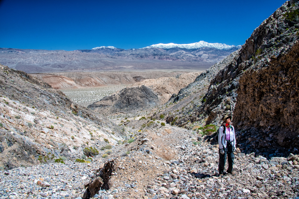 Panamint Valley, Death Valley, Nadeau Trail, Modoc
