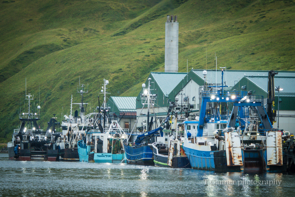 Aleutian Islands, AMHS, Alaska, Alaska Marine Highway System, Tustumena, Unalaska, Dutch Harbor, commercial fishing, boats, Deadliest Catch