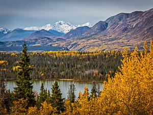 Haines, Alaska, calendar, Alaska calendar, nature photography, wildlife, landscape