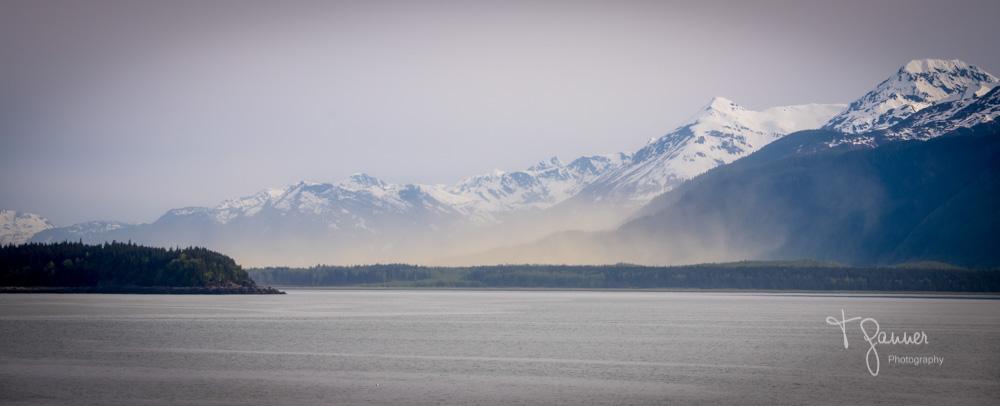 Chilkoot, Haines, Alaska, spruce pollen, climate change
