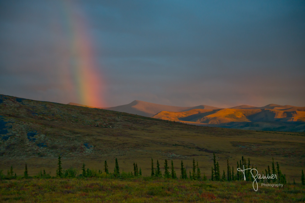Dempster Highway, Yukon Territory, Northwest Territory, Arctic Circle, Richardson Mountains, tundra, alpenglow