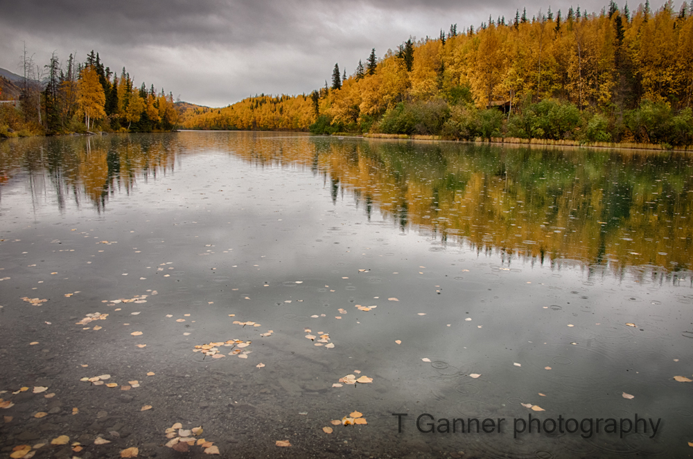 Alaska, autumn, foliage, Glenn Highway, Long Lake,, reflection