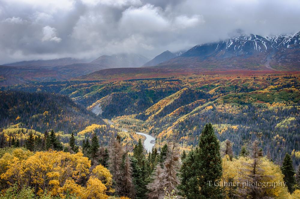 Alaska, autumn, Alaska autumn, foliage, Kluane, Yukon, Haines Highway,