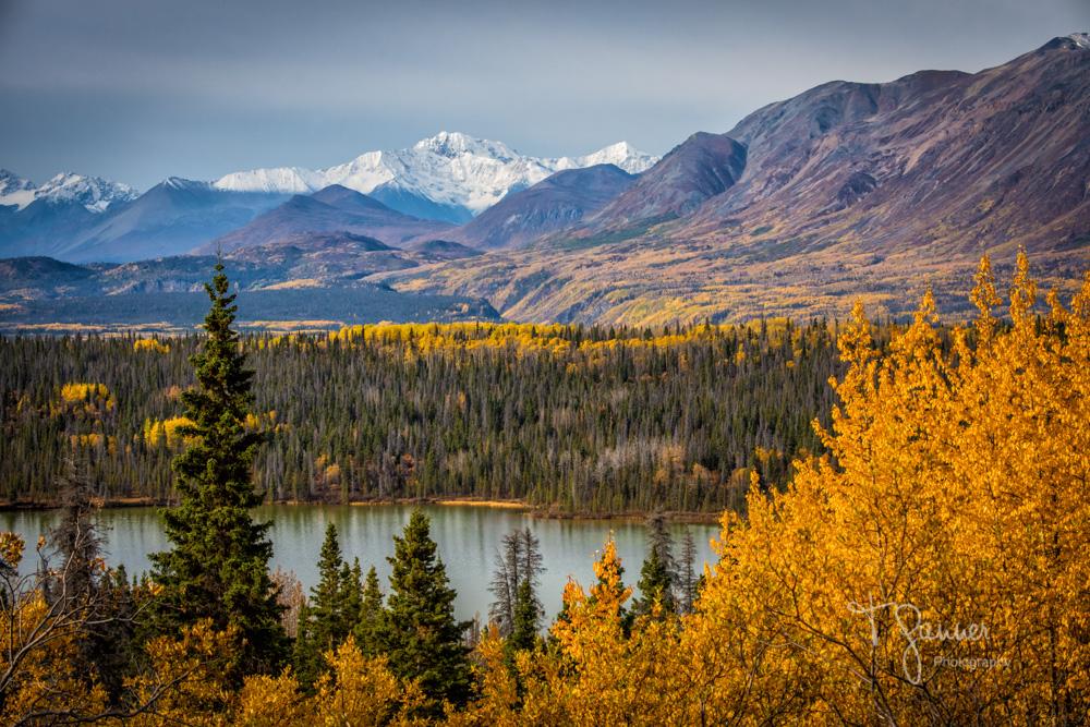 Haines, Alaska, Haines Highway, Haines Junction, Yukon Territory, autumn, foliage, tundra, glacier, Kluane