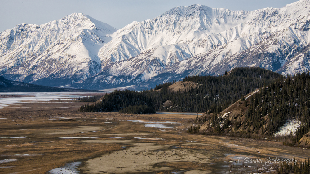 Kluane, Yukon Territory, Sheep Mountain, Slims River