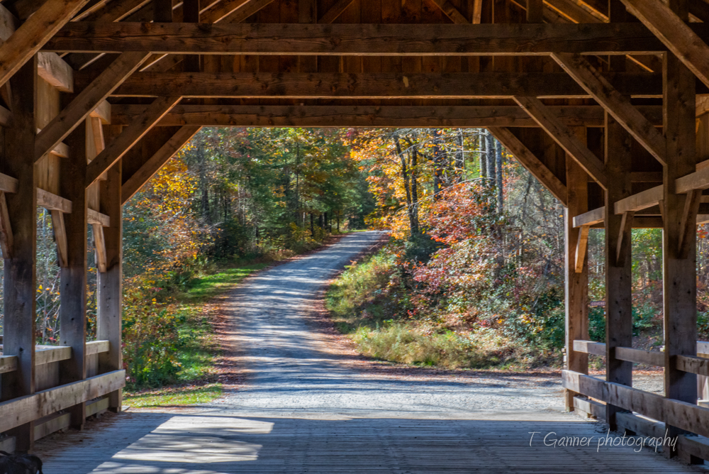 North Carolina, Brevard, Connestee Falls, autumn, foliage, waterfall, Dupont State Forest, covered bridge