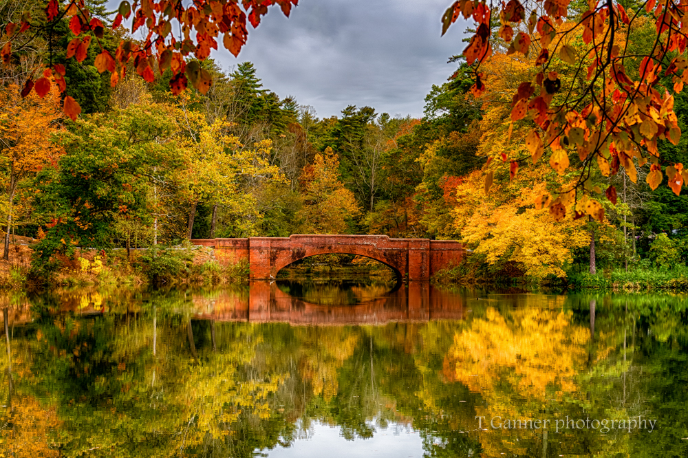 North Carolina, Asheville, Biltmore Estate, Vanderbuilt, autumn, foliage, North Carolina Autumn