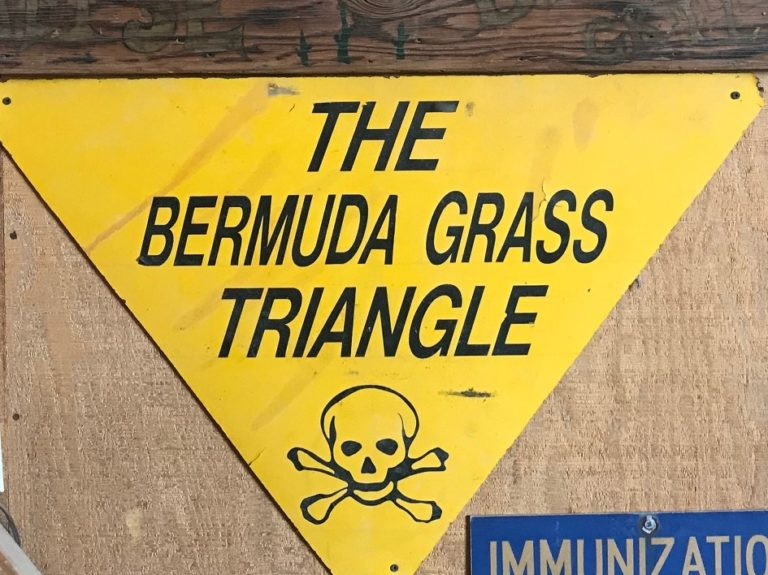 Saline Valley Chronicles – The Bermuda Grass Triangle