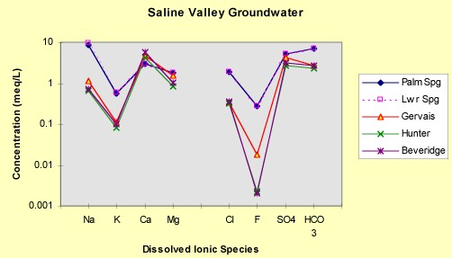 Saline Chronicles – Geochemical Analysis of the Warm Springs