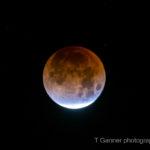 supermoon, bluemoon, blood moon, lunar ecplipse