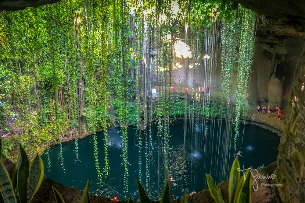 Chichen Itza, Maya, Mayan, Mayan culture, Yucatan, Mayan ruins,cenote, Ik-kil Cenote