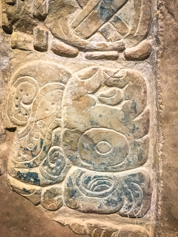 Mayan archaeology, Mayan anthropology