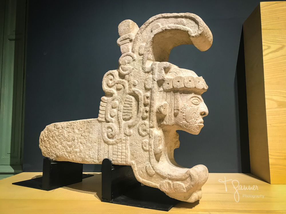 Mayan anthropology