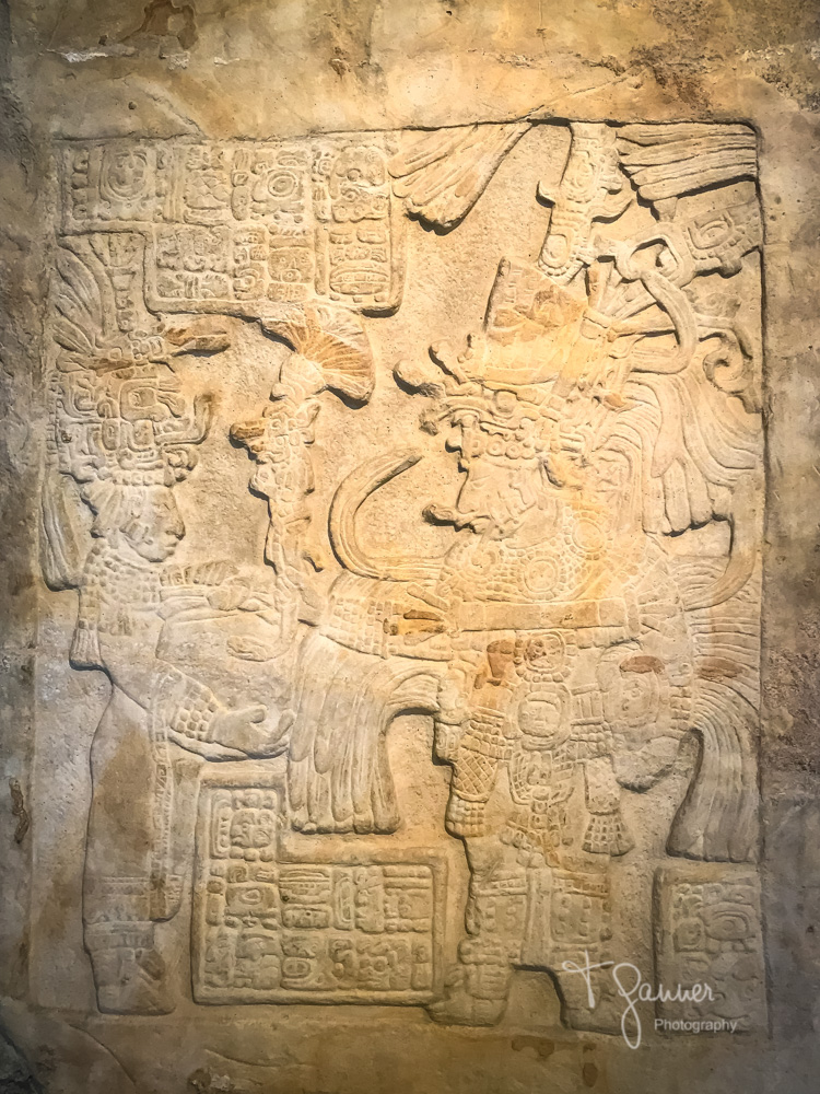 Mayan anthropology