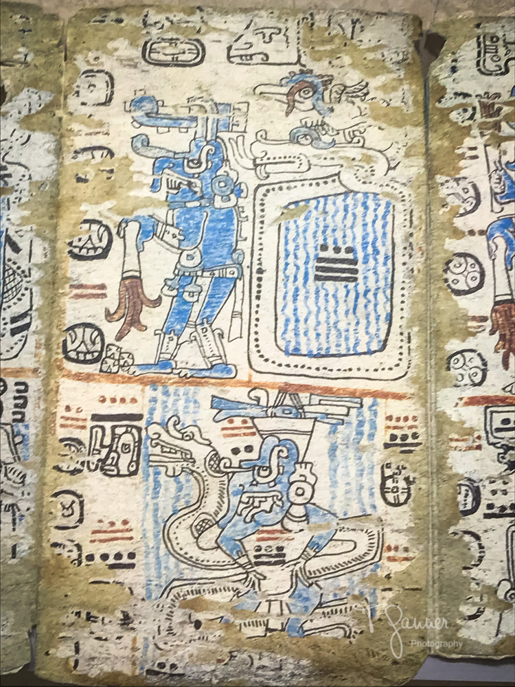 Mayan archaeology, codex, Mayan anthropology
